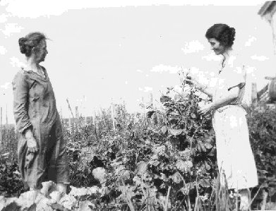 photograph: Helen Isabelle Dumville nee MacDonald (right) and her sister Effa Stewart (left)