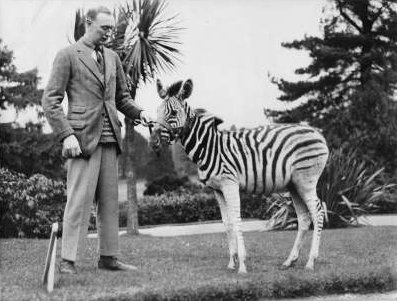 Robert Lambart Dunville (1893-1931) with a young zebra